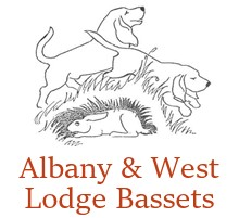 Albany & West Lodge Bassets